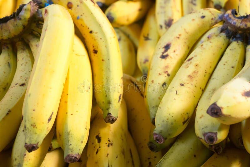 Schließen Sie oben von der reifen gelben Banane lizenzfreie stockfotografie