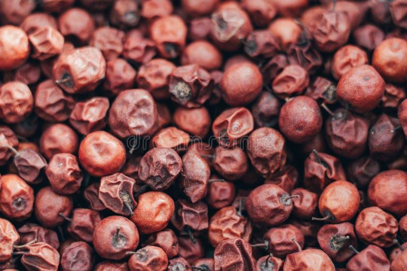 Schließen Sie oben von der roten getrockneten Jujube Ziziphus mauritiana, alias chinesisches Datum, Brustbeere, Chinee-Apfel, Juj lizenzfreies stockbild