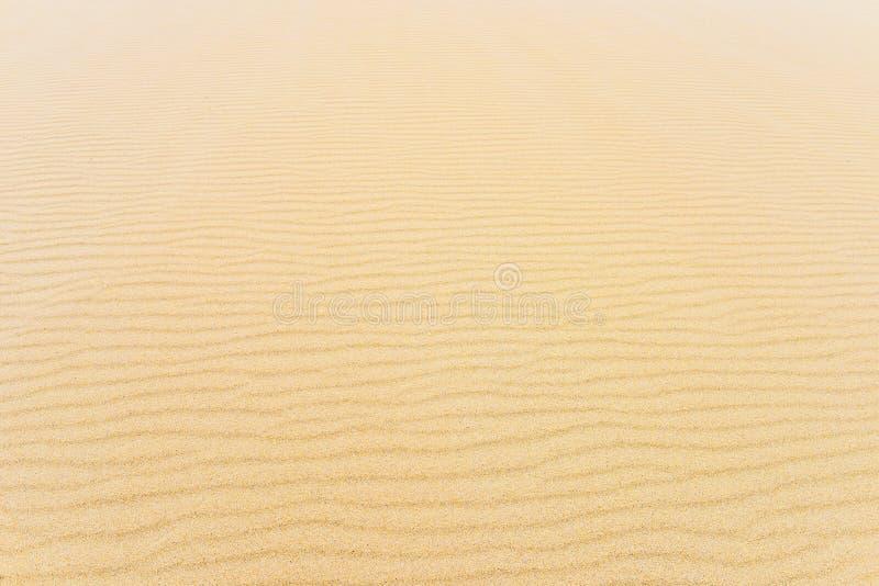 Schließen Sie oben von einem erstaunlichen Tarifa-Strand, Spanien lizenzfreie stockfotografie