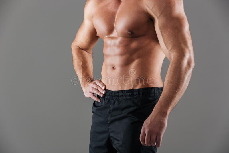 Schließen Sie oben von einem männlichen Bodybuildertorso des muskulösen Sitzes lizenzfreies stockbild