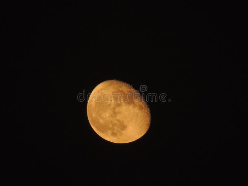 Schließen Sie oben von einem Mond lizenzfreies stockbild