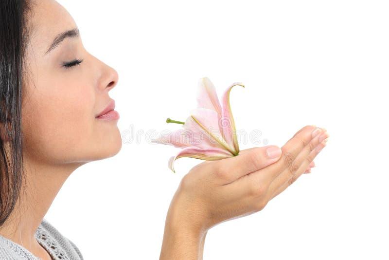Schließen Sie oben von einem Schönheitsprofil, das eine rosa Blume riecht stockbilder