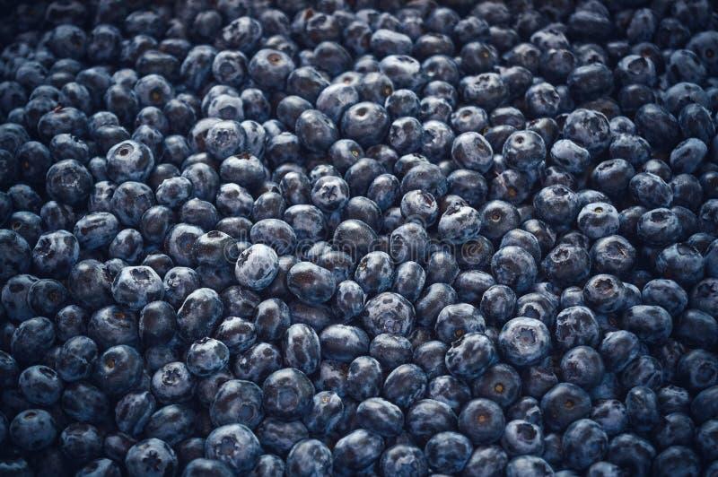 Schlie?en Sie oben von den frischen Blaubeeren als Hintergrund Beschneidungspfad eingeschlossen Konzept des gesunden und n?hrende lizenzfreie stockfotografie
