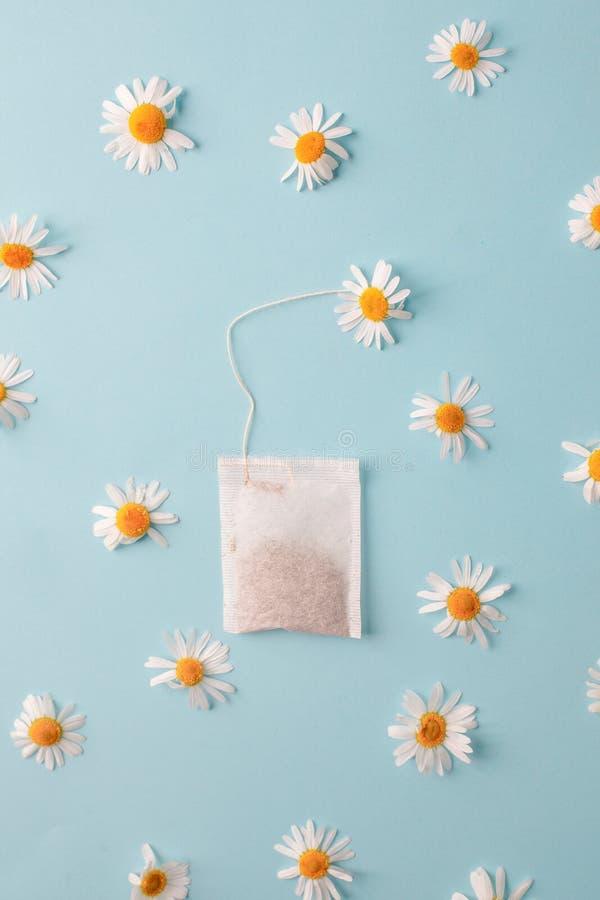 Schlie?en Sie oben von der Teezeit Trockener Kamillentee im Teebeutel, minimales Konzept Das kreative Kamillenantikrisengetränk b stockbild