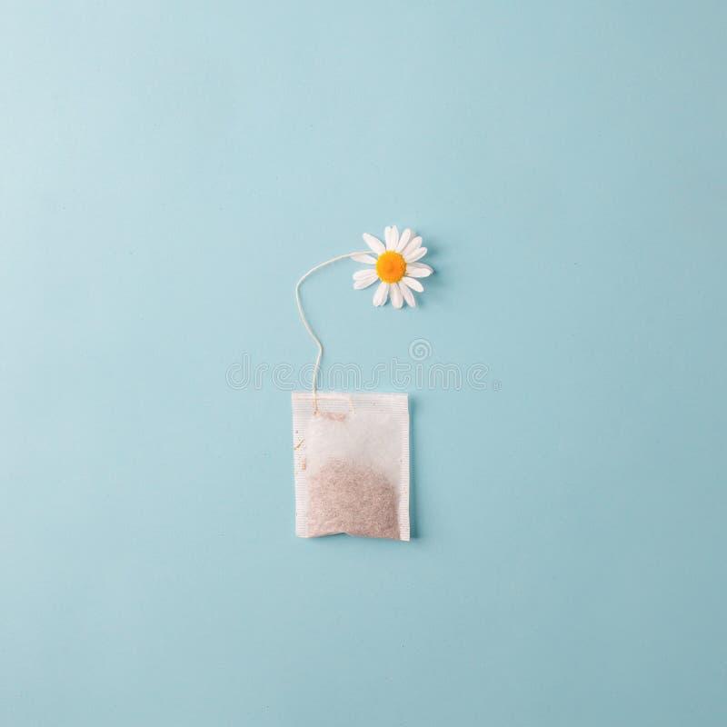 Schlie?en Sie oben von der Teezeit Trockener Kamillentee im Teebeutel, minimales Konzept Das kreative Kamillenantikrisengetränk b stockfotos