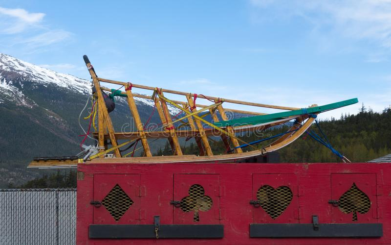 Schlittenhunde und -apparat, die warten, zu einem Gletscher während der Sommertouristensaison transportiert zu werden stockfoto