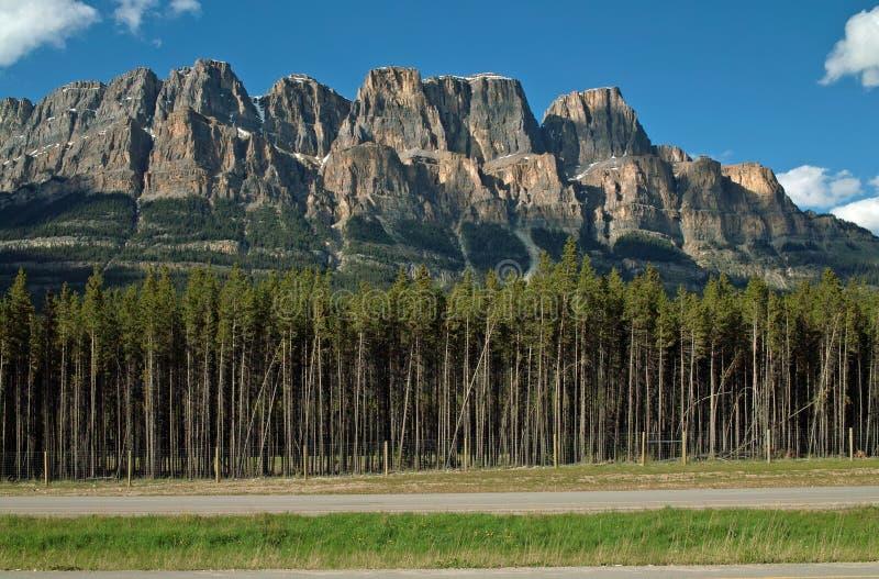 Schloss-Berg, Nationalpark Banffs, Alberta, Kanada. stockbilder