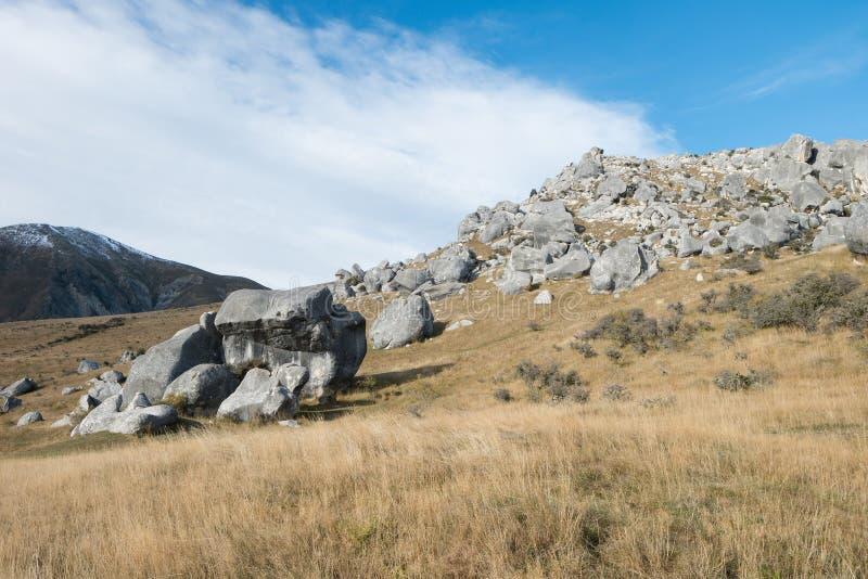 Schloss-Hügel, Neuseeland lizenzfreie stockfotos