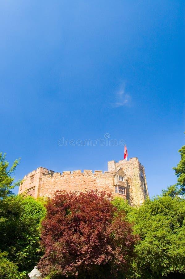 Schloss im Grün lizenzfreie stockbilder