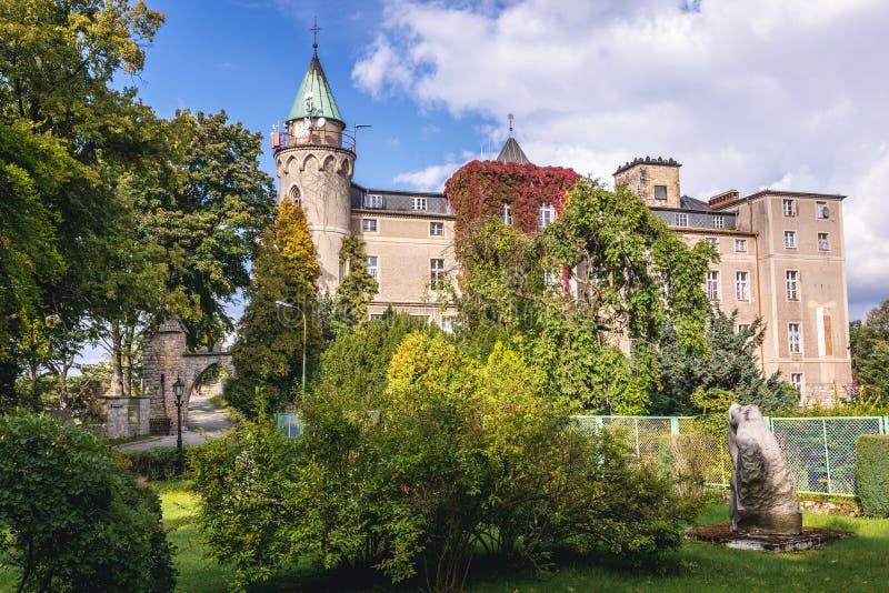 Schloss nahe Szczytna stockfotografie
