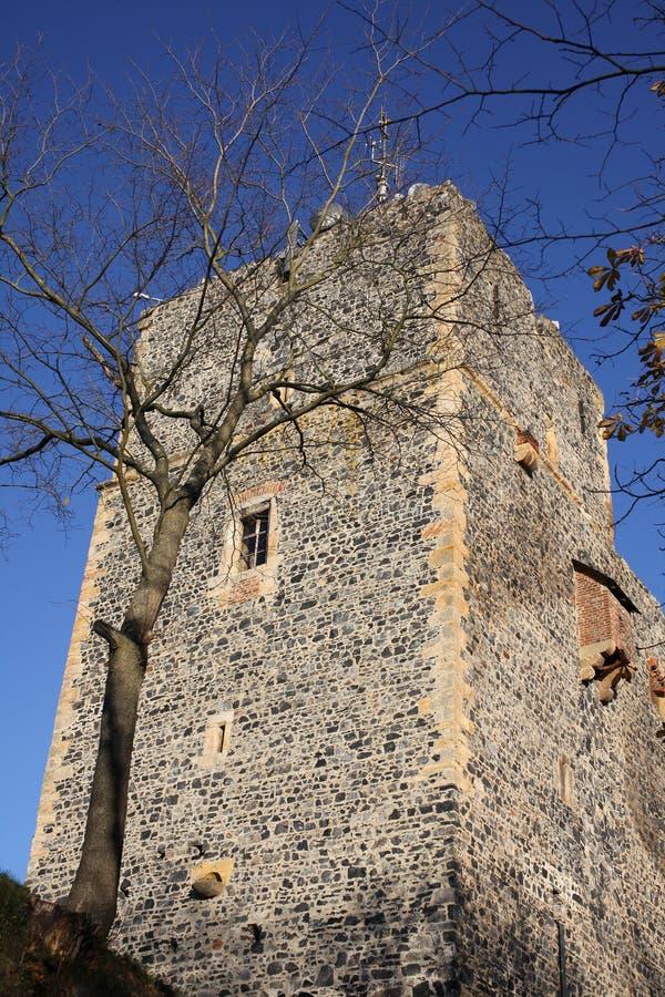 Schloss Radyne, Pilsen, Tschechische Republik lizenzfreie stockfotos