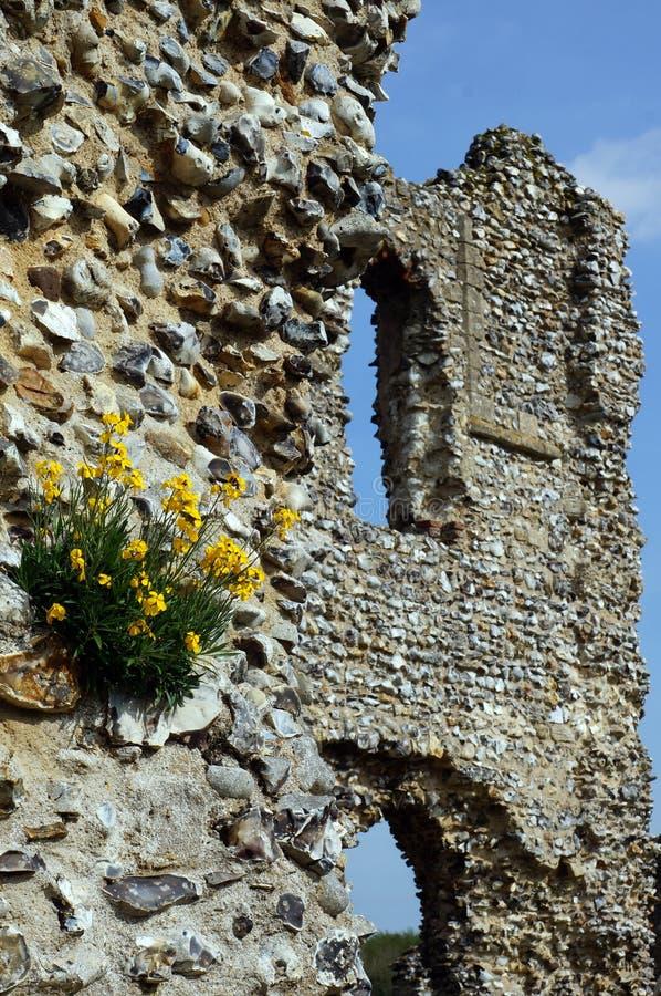 Schloss-Ruinen in der Blüte stockbilder