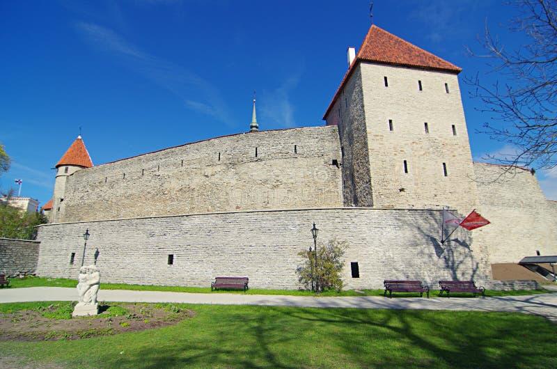 Schloss Toompea in Tallinn, Estland lizenzfreie stockfotos