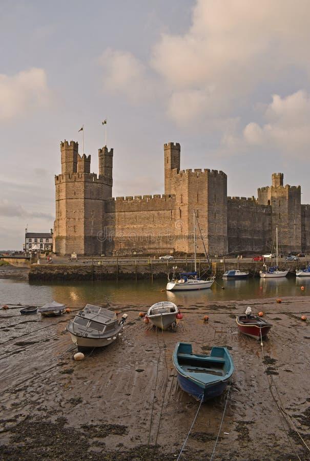 Schloss und festgemachte Boote am Hafen von Caernarfon, Nord-Wales stockfotografie