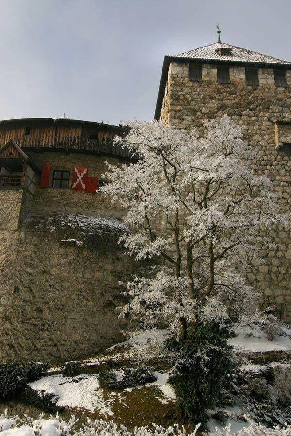 Download Schloss Vaduz in winter stock photo. Image of historic - 451952