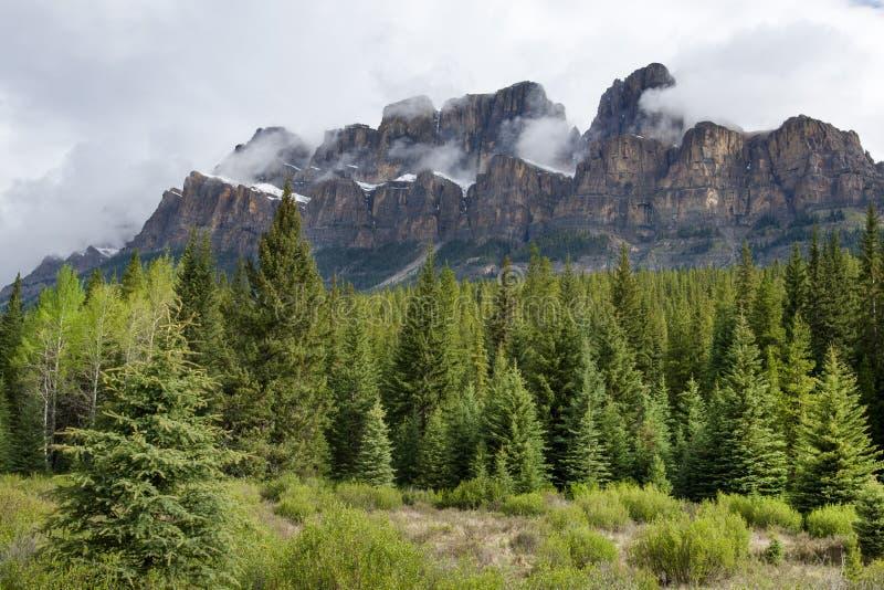 Schlossberg in kanadischen Rockies lizenzfreies stockbild