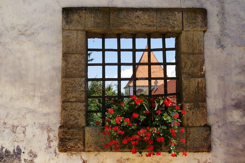 Schlossfenster, Ptuj, Slowenien lizenzfreie stockfotografie