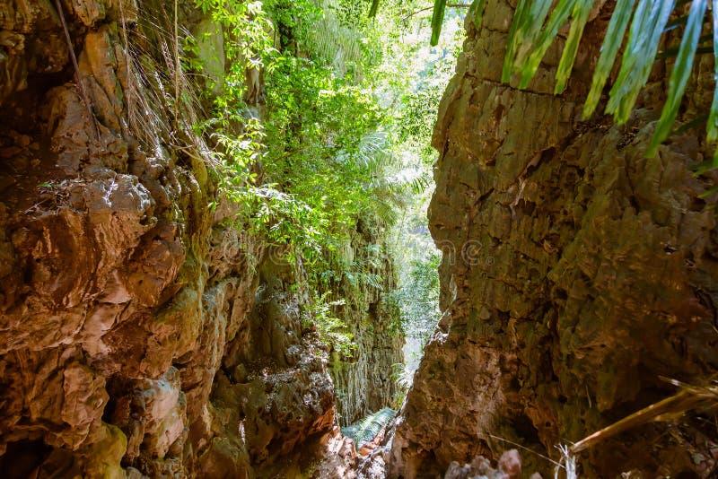 Schlucht in den tropischen Bergen Dschungel, Zugang zur Lagune auf die Klippen der Railay-Halbinsel lizenzfreie stockbilder