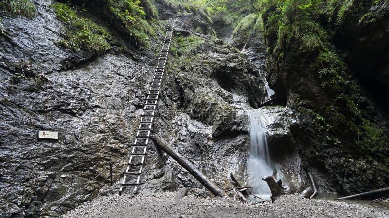 Schlucht Sucha Bela in Slovensky-raj Nationalpark, Slowakei lizenzfreie stockfotografie