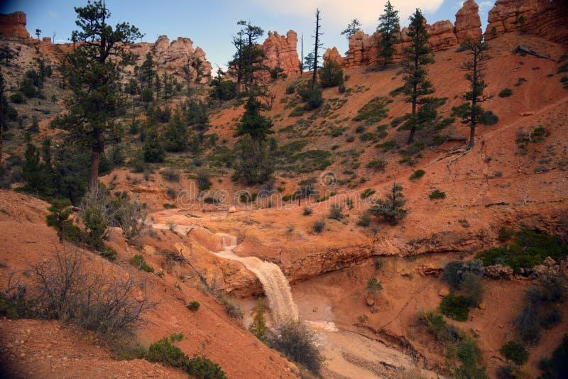 Schlucht-Wüsten-Wasserfall stockfotos