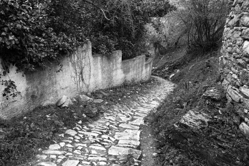 Schmale alte Steinstraße und Yard in Milies-Dorf, Pelions-Berg, Griechenland lizenzfreie stockfotos