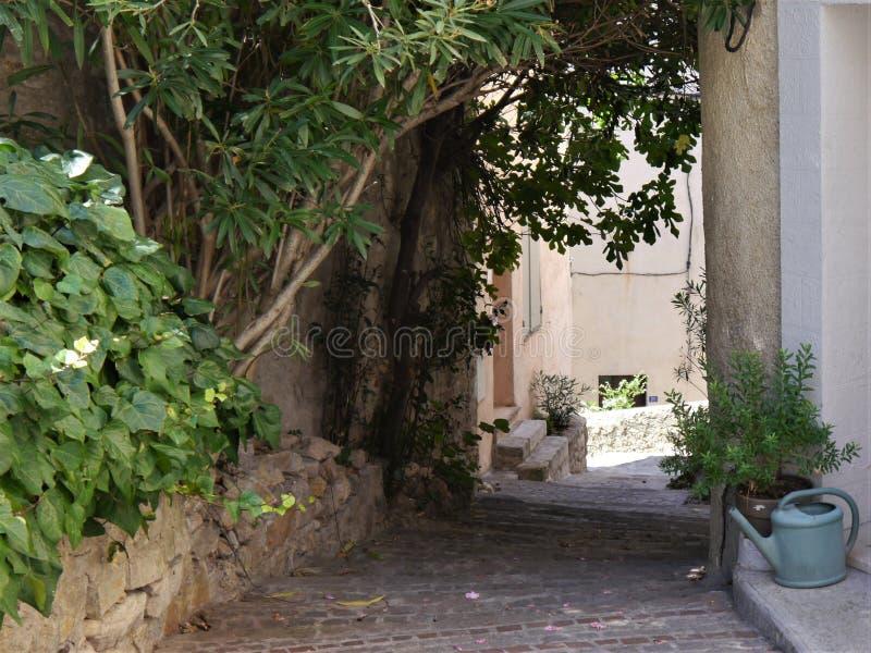 Schmale Gasse im Halbschatten, in Süd-Frankreich, im Topf und in den Kübelpflanzen, typischer Sandstein für Häuser, grobe Kopfste lizenzfreie stockfotografie