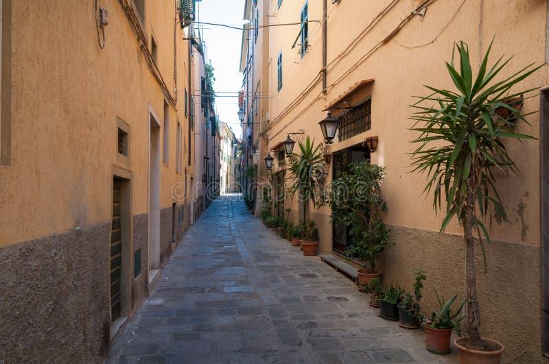 Schmale italienische Straße mit Kopfsteinsteinweg und -anlagen in den Blumentöpfen lizenzfreie stockfotografie
