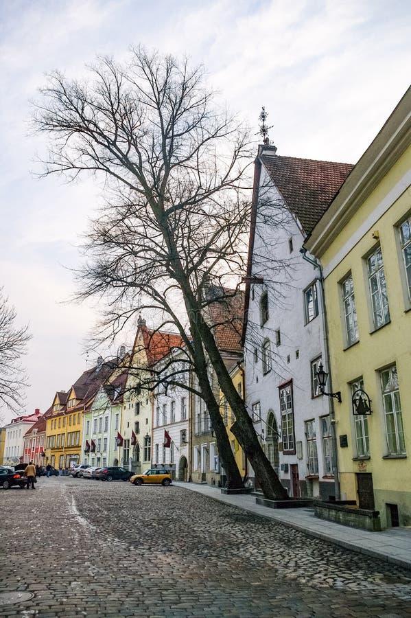 Schmale Straße mit mittelalterlichen Häusern in der Altstadt von Tallinn, Estland stockfoto