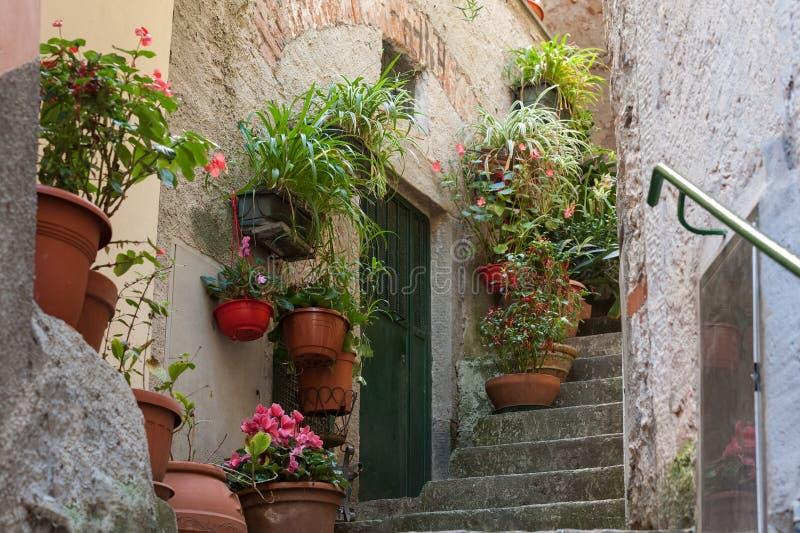 Schmale Straße verziert mit Blumentöpfen in Vernazza-Stadt, Nationalpark Cinque Terres, Italien stockbilder