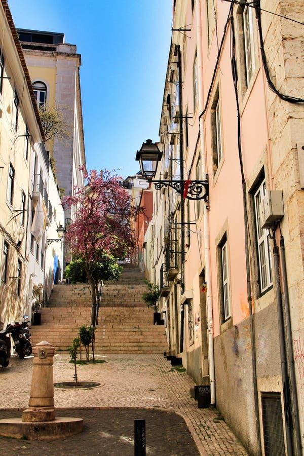 Schmale und bunte Stra?en von Lissabon stockfotografie