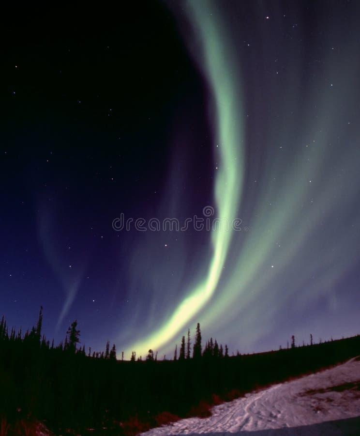 Schmaler Auroralichtbogen stockfoto