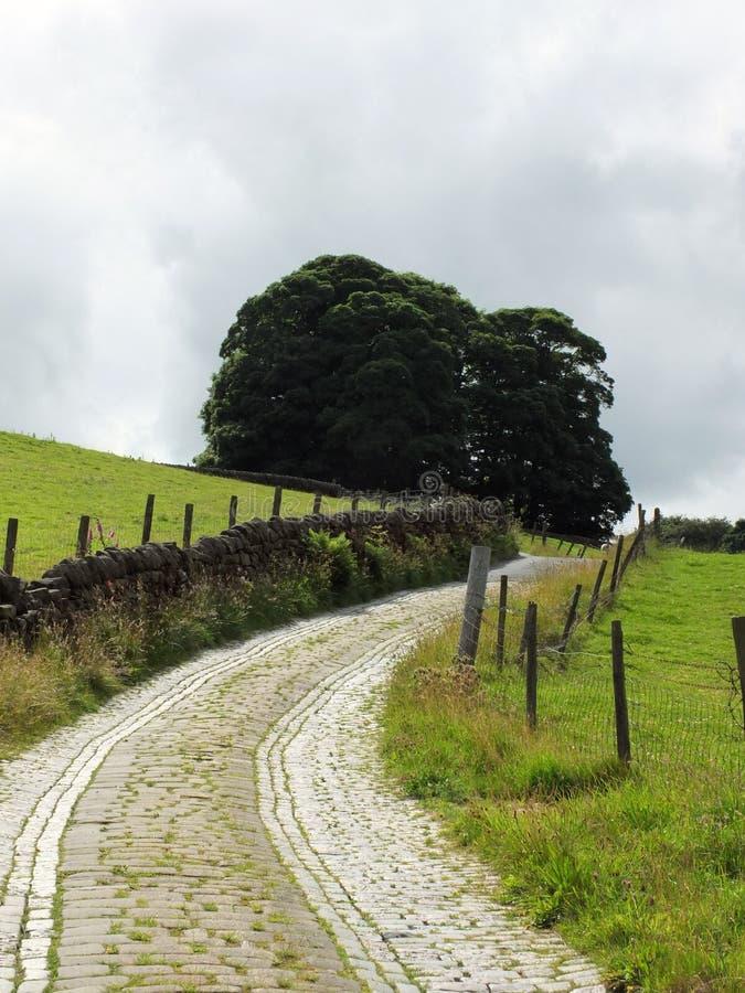 Schmaler Wicklungsfeldweg mit Steinwandkopfsteinen lizenzfreies stockbild