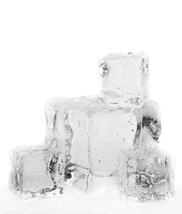 Schmelzende Eiswürfel stockfotografie