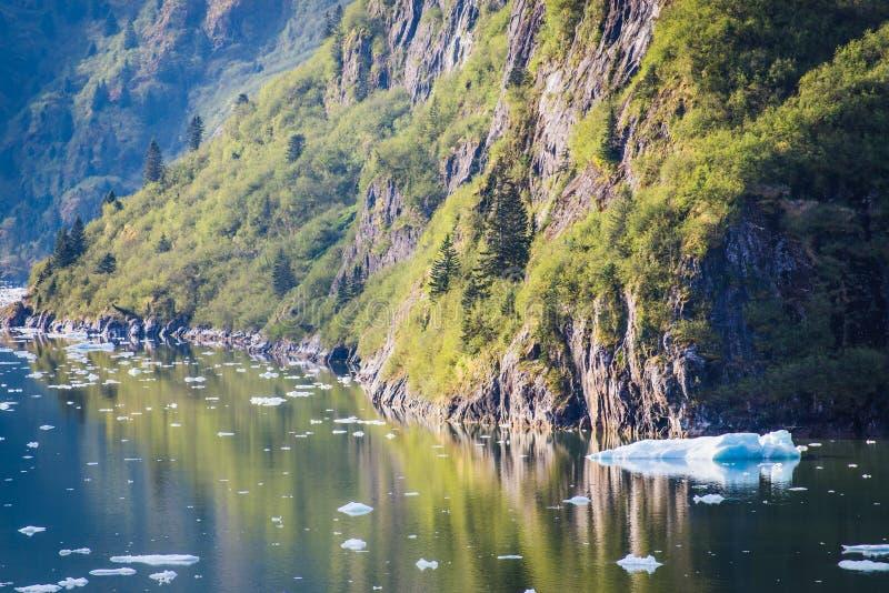 Schmelzender Eisberg im Mendenhall See lizenzfreie stockfotografie