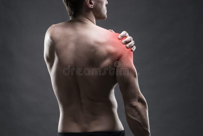 Schmerz in der Schulter Muskulöse männliche Karosserie Hübscher Bodybuilder, der auf grauem Hintergrund aufwirft Zurückhaltender  lizenzfreies stockfoto