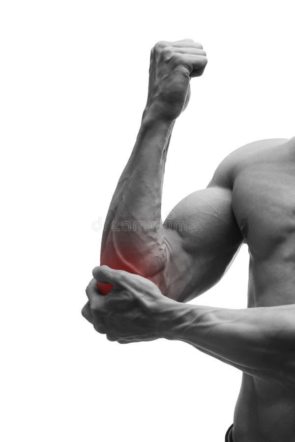 Ungewöhnlich Muskulöse Männliche Körper Bilder - Menschliche ...
