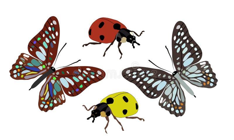 Schmetterling und Marienkäfer vektor abbildung