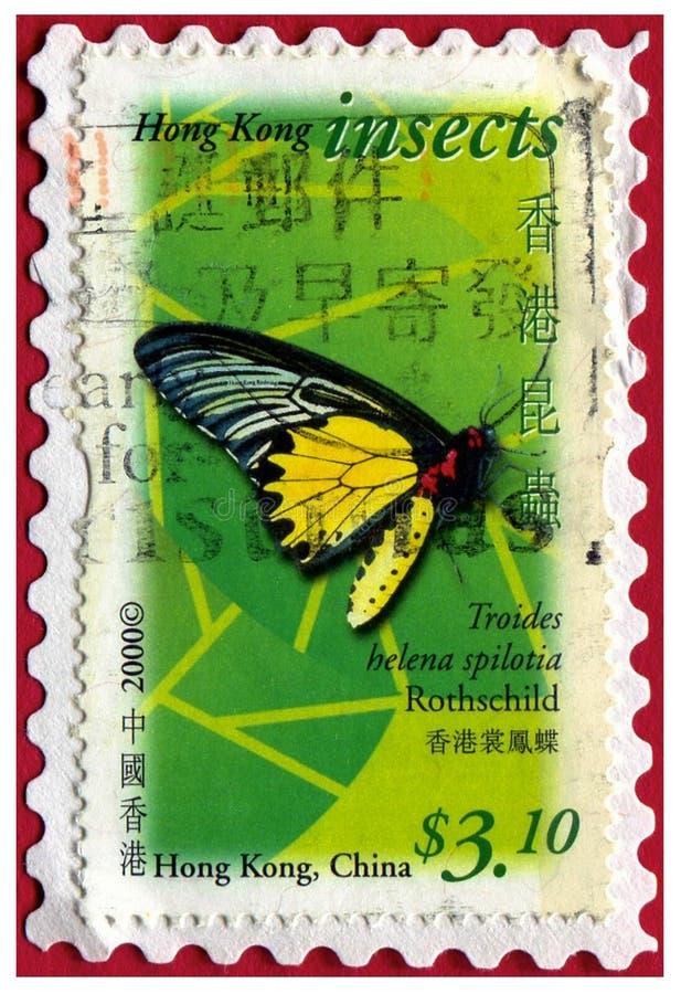 Schmetterlings-Briefmarke-Hong Hong China-Insekt stockfoto