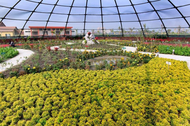 Schmetterlings-Garten lizenzfreie stockfotografie