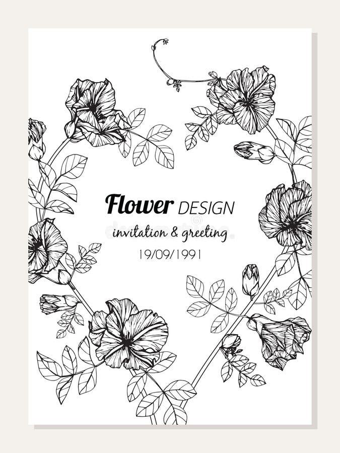 Schmetterlingserbsen-Blumenrahmen-Zeichnungsillustration für Einladungs- und Grußkartendesign vektor abbildung