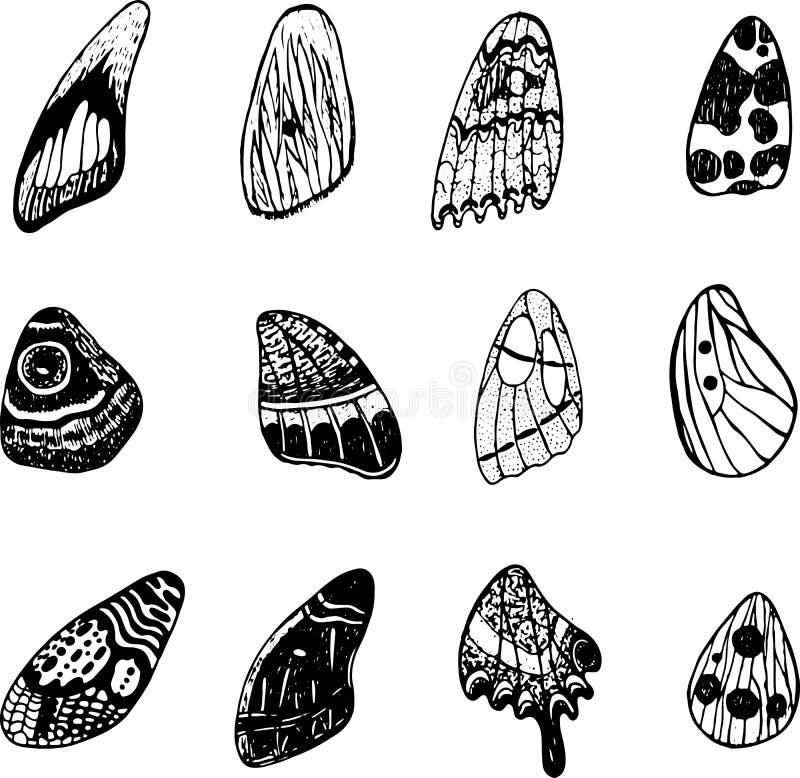 Schmetterlingsflügel eingestellt Grafische Gekritzeltintenkunst Getrennte Elemente vektor abbildung