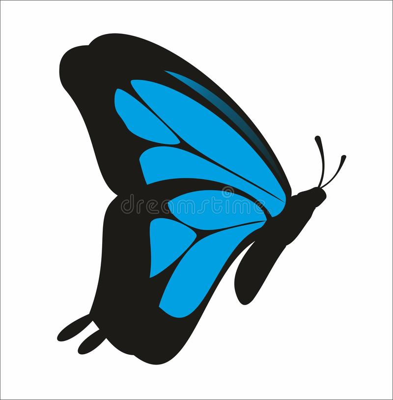 Schmetterlingsvektor stockbilder