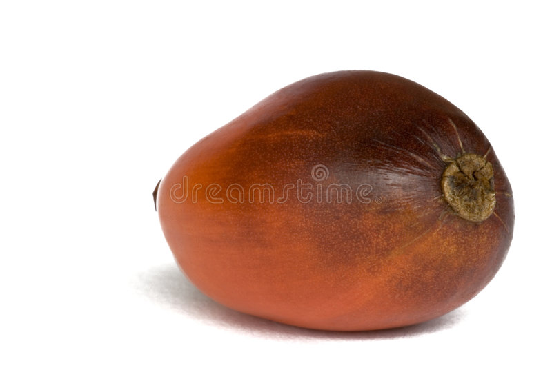 Schmieröl-Palmen-Frucht stockfotos