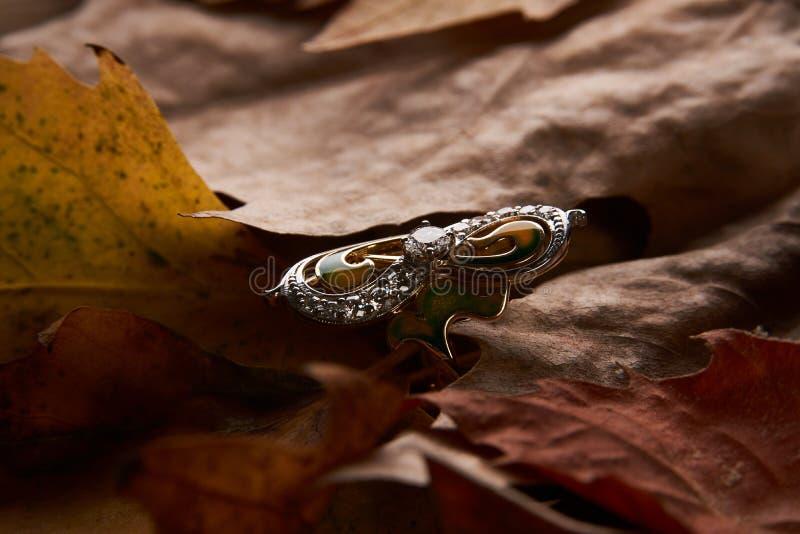 Schmuckgolddiamantring auf Herbstlaubhintergrund lizenzfreies stockbild