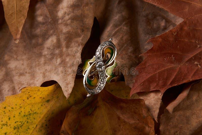 Schmuckgolddiamantring auf Herbstlaubhintergrund stockfotos