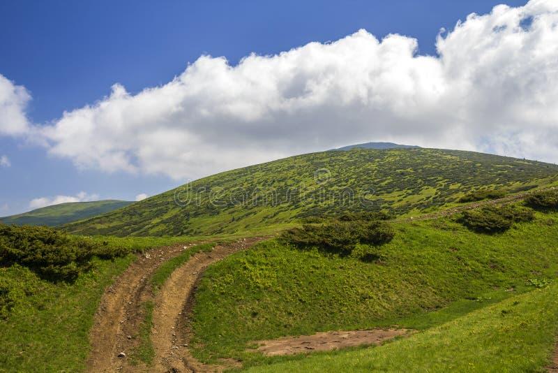 Schmutzautobahn auf dem grünen grasartigen Hügel, der zu den waldigen Bergen Kante auf hellem Kopienraumhintergrund des blauen Hi lizenzfreies stockbild