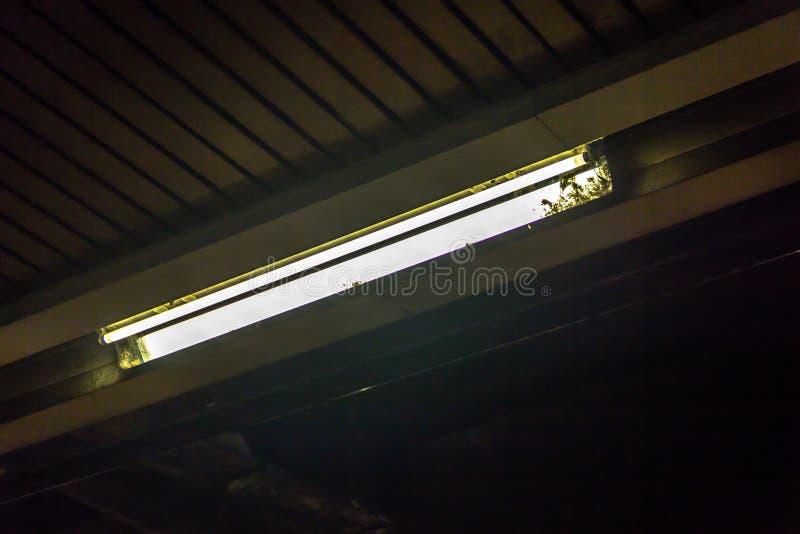 schmutzige neonr hre stockfoto bild von lampe neon 55001406. Black Bedroom Furniture Sets. Home Design Ideas