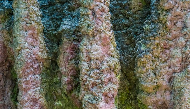 Schmutzige und verwitterte Steinhöhlenwand in der Makronahaufnahme, Naturfelsenhintergrund stockfotografie