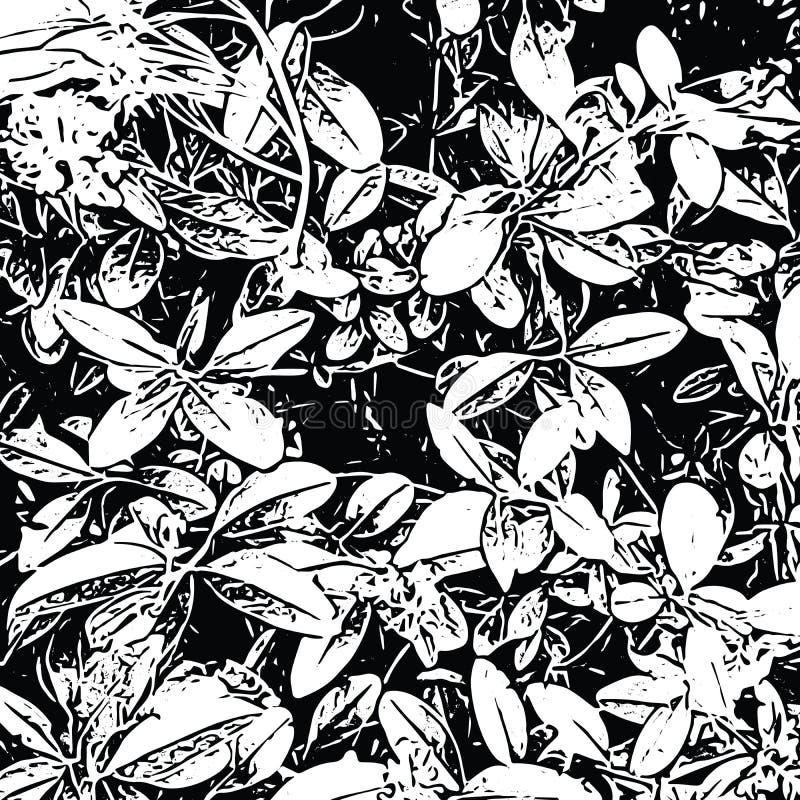 Schmutznatürliches Blumenmuster von Buschblättern Abstrakter Vektorbeschaffenheitshintergrund in Schwarzweiss stock abbildung
