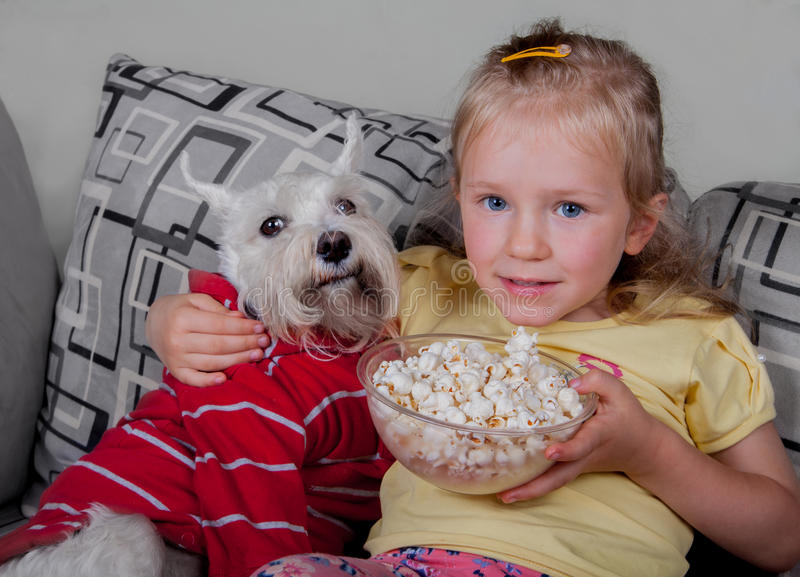 Schnauzer dog and little girl watching tv or a movie sitting on a grey sofa or couch with popcorn royalty free stock images